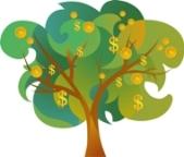 """""""money tree"""""""
