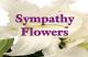 Sunny Slope Floral