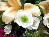 Express Your Sympathy With Flowers
